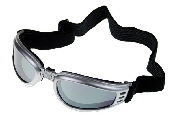 Motorcycle Goggles, Motorcycle Glasses, Pugs Gear