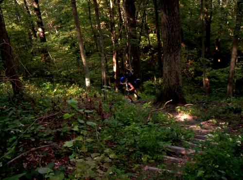 knobstone trail