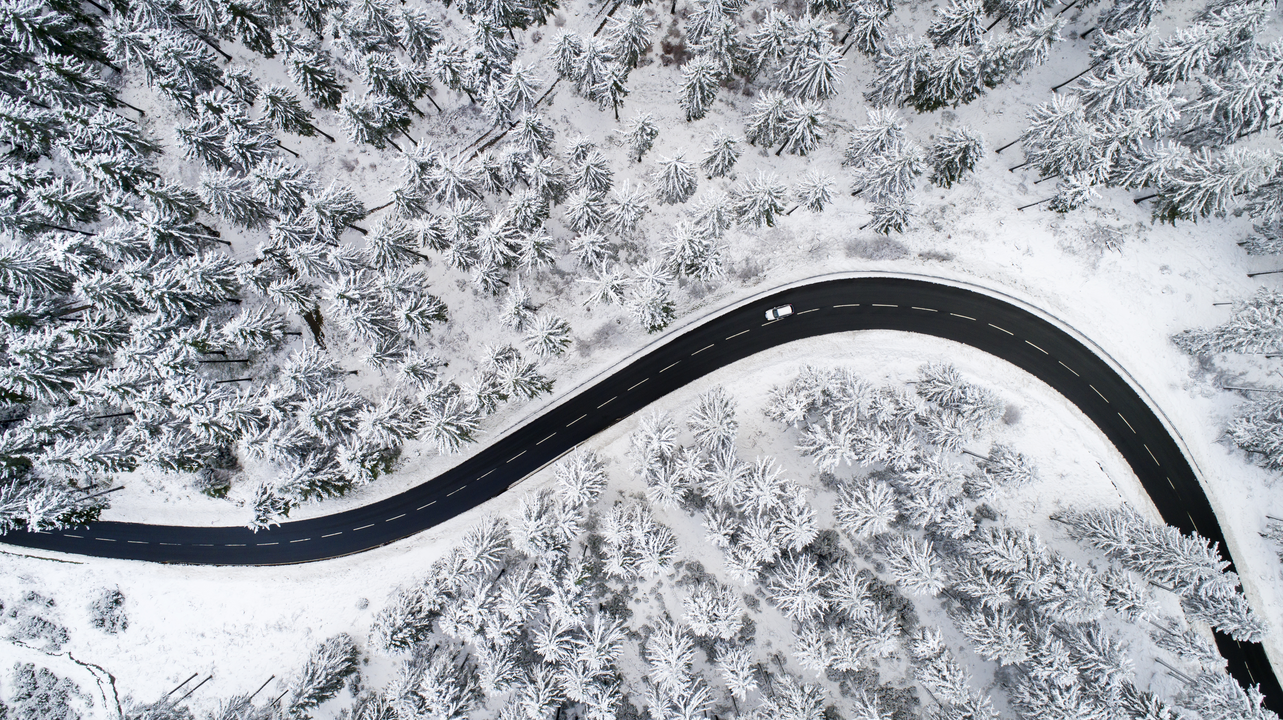 Car driving on road through snowy forest