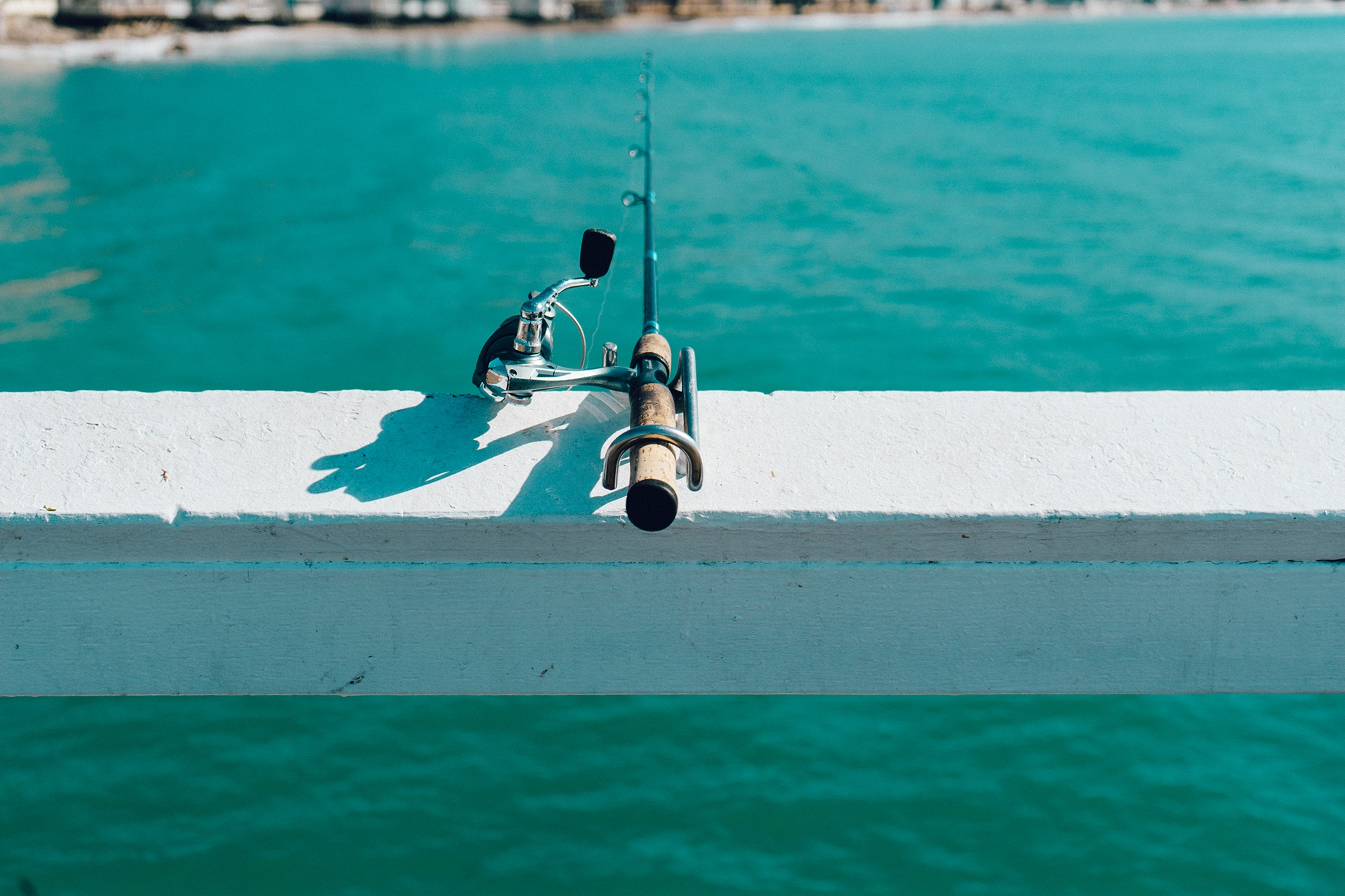 Fishing Vacation Blog Pugs