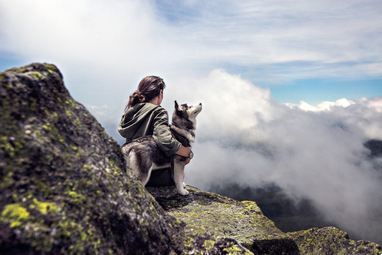 Hiking With Your Dog Pugs
