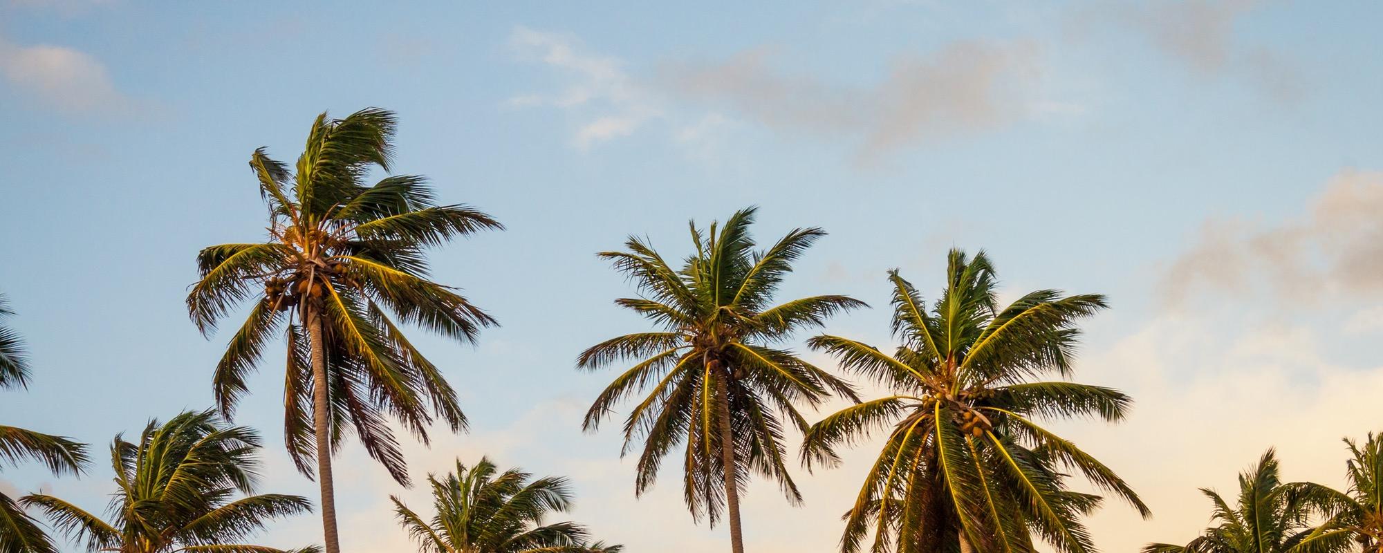 Savoring the Last of Summer Blog