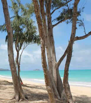 Best quiet Oahu beaches Waimanalo Beach
